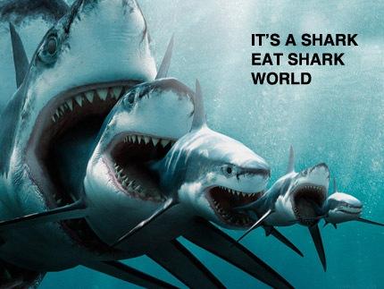 History Of Sharks