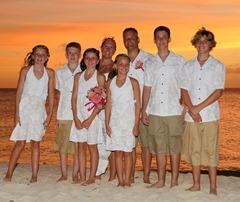 classic-hibiscus-family